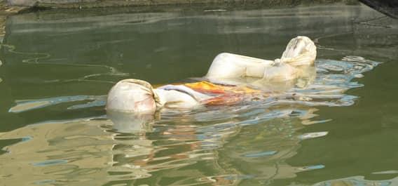 ગંગા નદીમાં લાશોના ઢગલા, અંતિમ સંસ્કારના પૈસા ના હોવાથી કયા રાજ્યોના લોકો ગંગામાં પધરાવી રહ્યાં છે મૃતદેહો, જુઓ તસવીરો