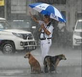 Kolkata Cop: కుక్కలు తడవకుండా గొడుగు పడుతూ... ట్రాఫిక్ని కంట్రోల్ చేస్తున్న పోలీసు... ఫొటో వైరల్