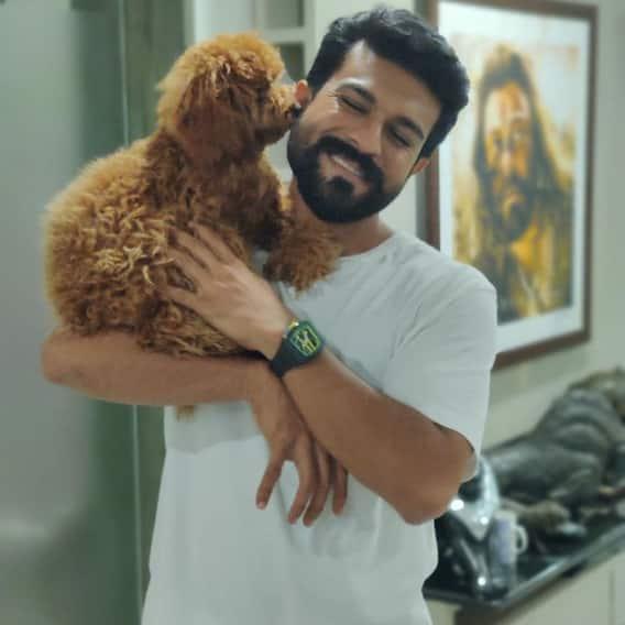 Mega Hero Ramcharan Latest Photos: 'రైమ్' ను ముద్దులతో ముంచెత్తుతున్న రామ్ చరణ్.. క్యూట్ పప్పీతో షికార్లు